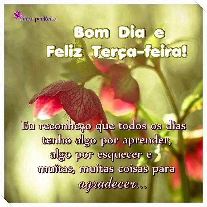 Conhecido Frases de bom dia e feliz terça-feira para compartilhar. UP27