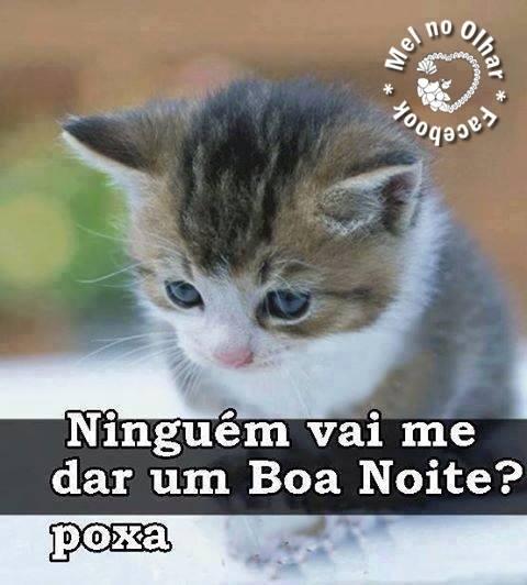 Frases De Bo Noite Para Compartilhar No Facebook E Whatsapp