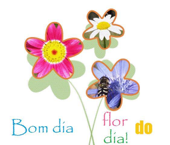 Frases De Bom Dia Para Facebook E Whatsapp